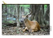 Velvet Buck At Rest  Carry-all Pouch