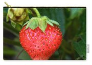 Vine Ripened Strawberry Carry-all Pouch