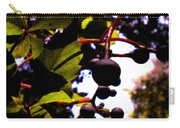 Virginia Creeper Fruit Carry-all Pouch