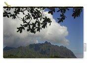 Waiahole Beach Park Carry-all Pouch by Mark Gilman