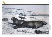 Walruses On Ice Field Carry-all Pouch