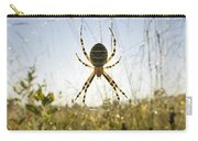 Wasp Spider Argiope Bruennichi In Web Carry-all Pouch