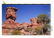 Watching Carry-all Pouch by Robert Bales