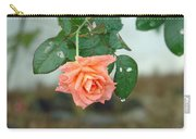 Water Dripping From A Peach Rose After Rain Carry-all Pouch
