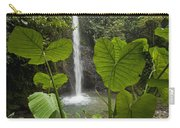 Waterfall In Lowland Tropical Rainforest Carry-all Pouch