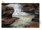 Waterfall Ricketts Glen Carry-all Pouch