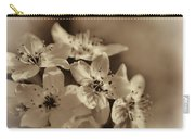 Waves Of Light In Sepia Carry-all Pouch