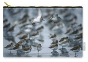 Western Sandpiper Calidris Mauri Flock Carry-all Pouch by Michael Quinton