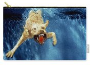 Wet Paws Carry-all Pouch by Jill Reger