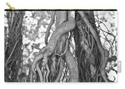 What Trees Know Carry-all Pouch by Betsy Knapp