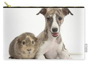 Whippet Pup With Guinea Pig Carry-all Pouch