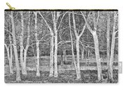 White Grove Carry-all Pouch
