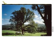 White Horse At Powerscourt, Co Wicklow Carry-all Pouch