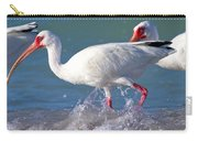 White Ibis On The Shore Carry-all Pouch