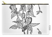White Nettle Carry-all Pouch
