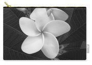 White Plumeria Bw Carry-all Pouch