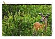Whitetail Deer In Meadow, Killarney Carry-all Pouch