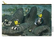 Whole Family Of Clownfish In Dark Grey Carry-all Pouch by Mathieu Meur