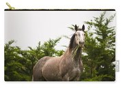 Wild Horse In The Wilderness Carry-all Pouch