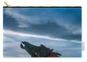 Wild Horse Sculpture Carry-all Pouch