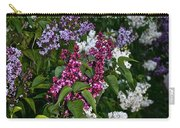 Winning Color Carry-all Pouch by Susan Herber