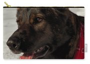 Winter Dog Carry-all Pouch by Karol Livote