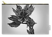 Winter Dormant Rose Of Sharon - Bw Carry-all Pouch