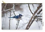 Winter Jay Carry-all Pouch