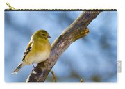 Winter Morning Song Bird Carry-all Pouch