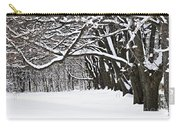 Winter Park With Snow Covered Trees Carry-all Pouch by Elena Elisseeva