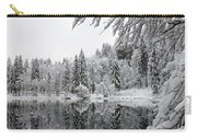 Wintery Reflections Carry-all Pouch