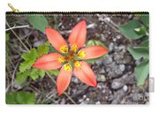 Wood Lily Lilium Philadelphicum Carry-all Pouch