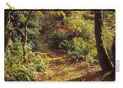 Woodland Path, Mount Stewart, Ards Carry-all Pouch