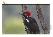 Woodpecker 4 Carry-all Pouch