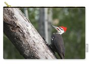 Woodpecker Sizes Me Up Carry-all Pouch