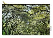 Wormsloe Plantation Entrance Carry-all Pouch