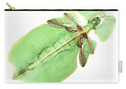 X-ray Of A Giant Leaf Insect Carry-all Pouch
