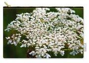 Yarrow Plant Flower Head  Carry-all Pouch