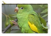 Yellow-chevroned Parakeet Brotogeris Carry-all Pouch