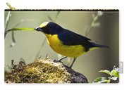 Yellow-crowned Euphonia Carry-all Pouch