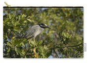 Yellow-crowned Night Heron Carry-all Pouch