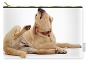 Yellow Labrador Scratching Carry-all Pouch