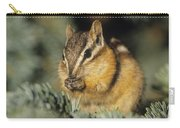 Yellow Pine Chipmunk, Kananaskis Carry-all Pouch