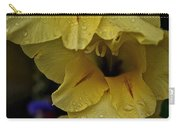 Yellow Trio Carry-all Pouch by Susan Herber