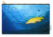 Yellowtail Snapper, Molokini Crater Carry-all Pouch