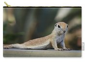 Yoga Ground Squirrel Style Carry-all Pouch