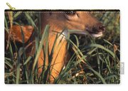 Young Deer Laying In Grass Carry-all Pouch