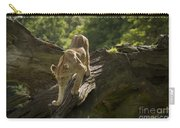 Young Lion Stalking Carry-all Pouch