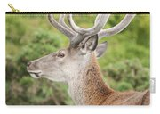 Young Red Deer Carry-all Pouch