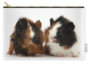 Young Tricolour Guinea Pigs Carry-all Pouch